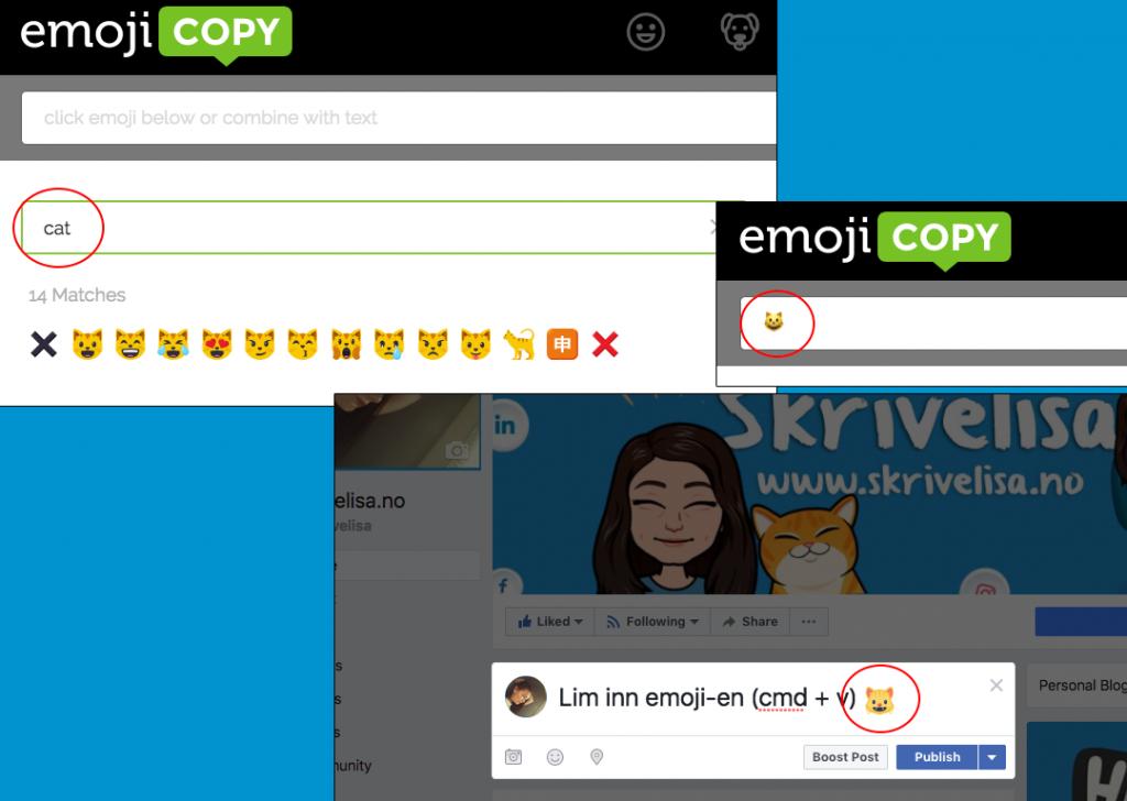 lim-inn-emojis-på-facebook