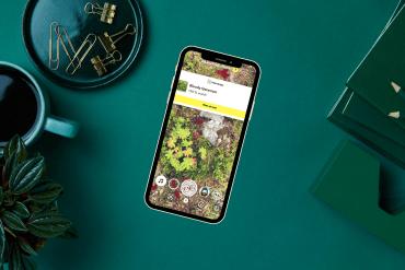 nå-kan-du-scanne-planter-på-snapchat